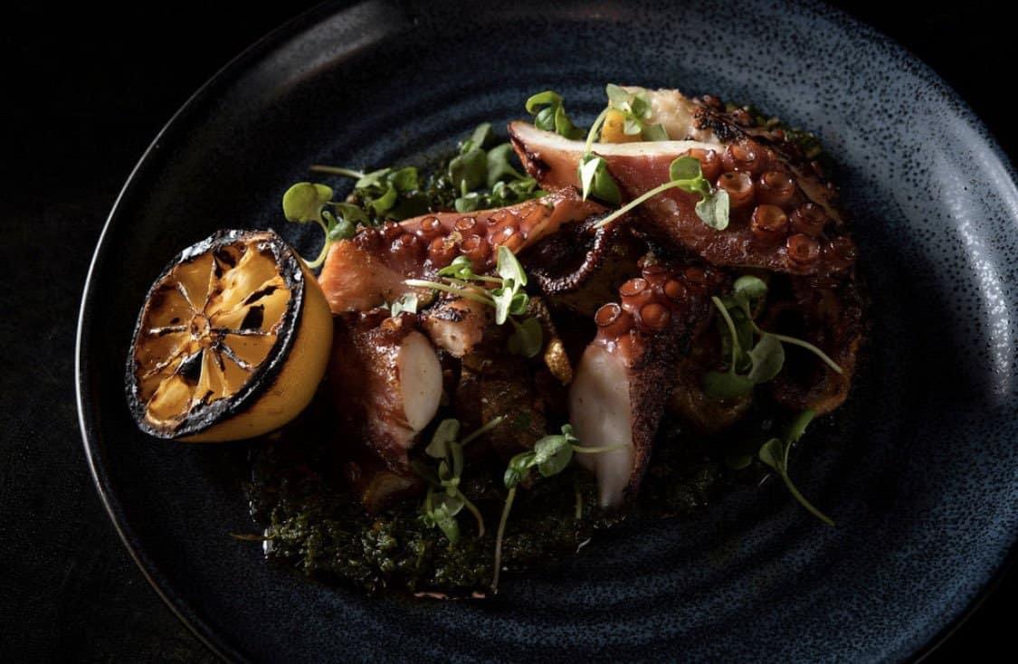 abbiocco italian cuisine octopus